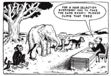 Cartoon of animals—monkeys, elephants, and others—being tested on their ability to climb a tree.